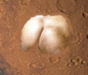 Ass on Mars