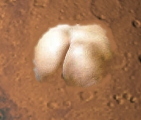 The famous ass on Mars