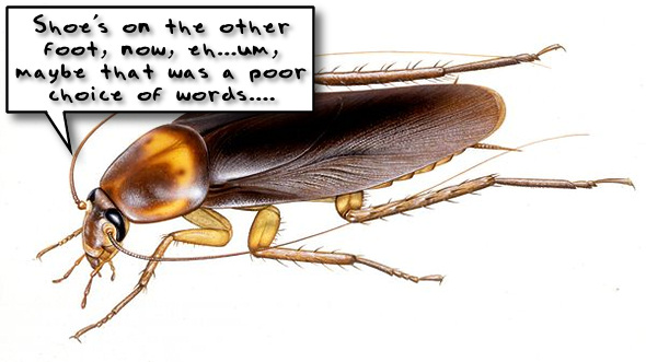 Cockroach-Eating