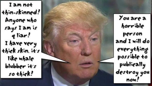 TrumpSkin